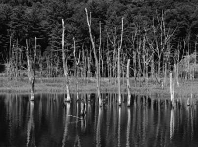 _DSC8189 reservoir pic 500px deep